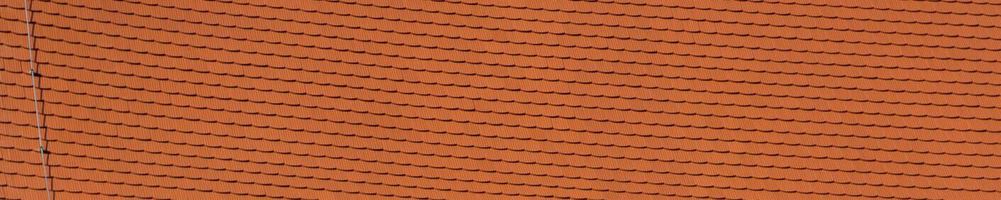 Dachówka karpiówka PROFIL krój segmentowy